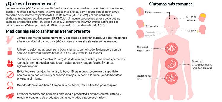 coronavirus graphic fpt4