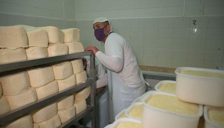 Los quesos semiduros figuran entre los productos que exportan en frontera. / Foto: Pedro Paredes Hernández