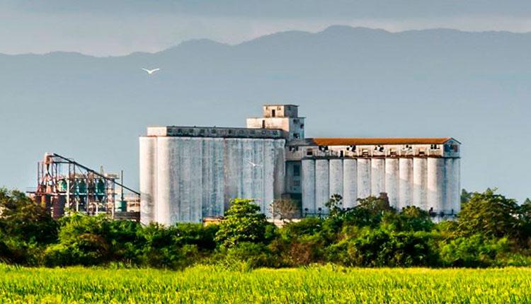 Empresa Agroindustrial de Granos Los Palacios