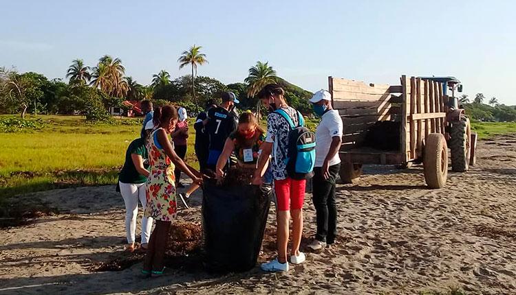Los jóvenes en Pinar del Río realizan labores de saneamiento ambiental