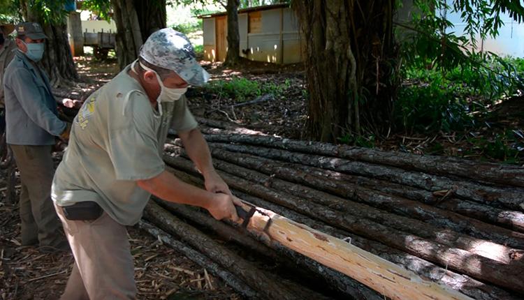 El empleo de recursos locales como la madera rolliza abarata los costos de la construcción de las casas de cultivo / Foto: Miguel Ángel Díaz Catalá
