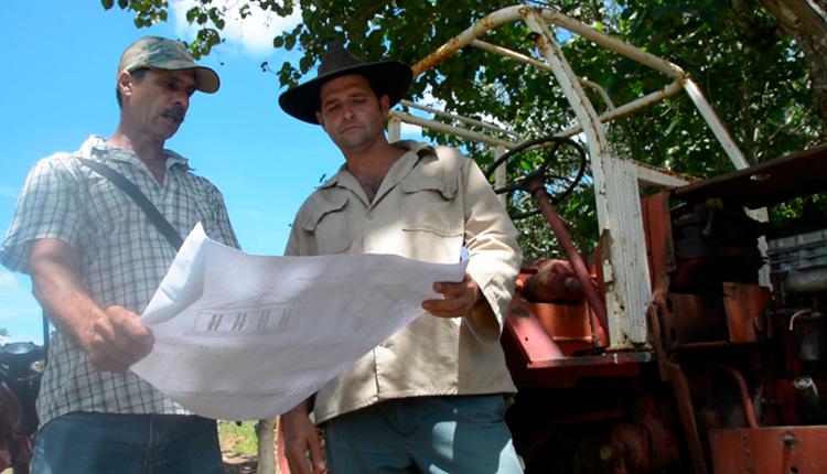 Evaristo (a la izquierda) y Gilberto, analizan detalles en el plano de las casas de cultivo / Foto: Miguel Ángel Díaz Catalá