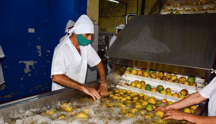 La Época cuenta con tecnología avanzada para el procesamiento de frutas.