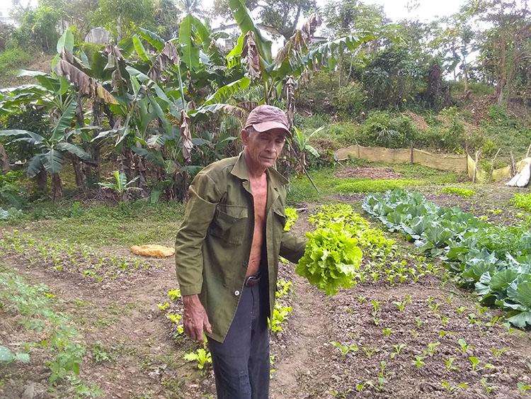 Para Luis García no hay tierra mala, todo depende de la labor de quien la cultiva.