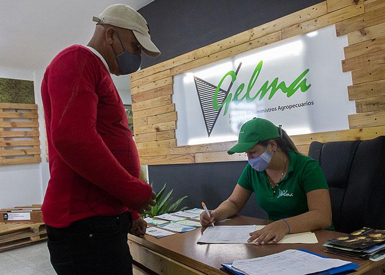 Tiendas en MLC de la Agricultura comercializarán insumos a trabajadores por cuenta propia