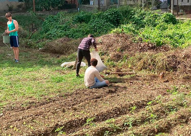Con el apoyo de familiares y amigos limpió el terreno que se encuentra en la parte trasera de su casa. En lo que antes fue un terreno en desuso, hoy germina la vida.
