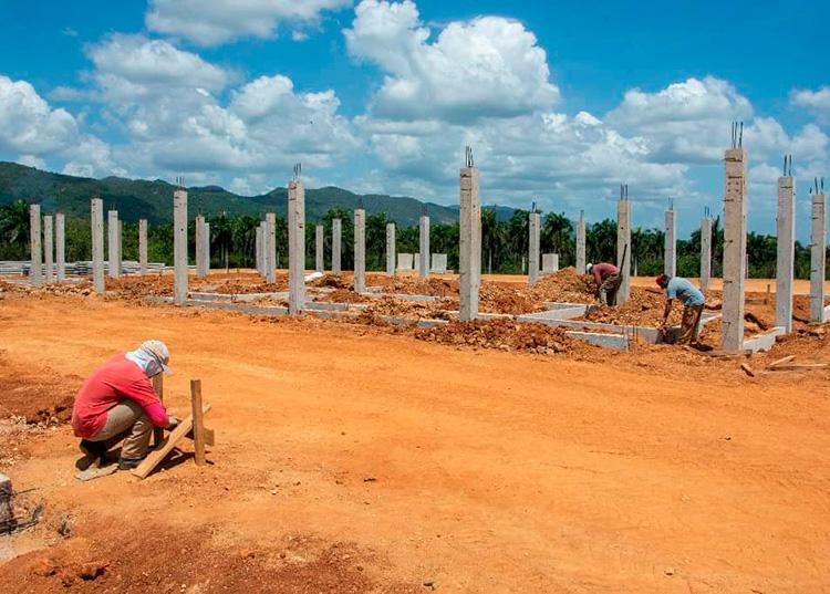 Construyen en Pinar del Río planta de polvo de moringa