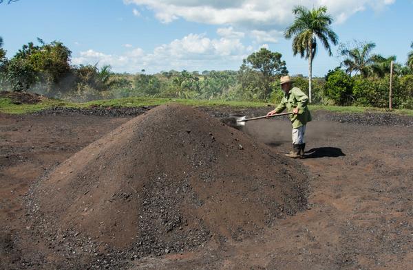 Carbonero en la preparación de un horno de carbón vegetal, en La Palma, Pinar del Río, Cuba, el 3 de abril de 2018.
