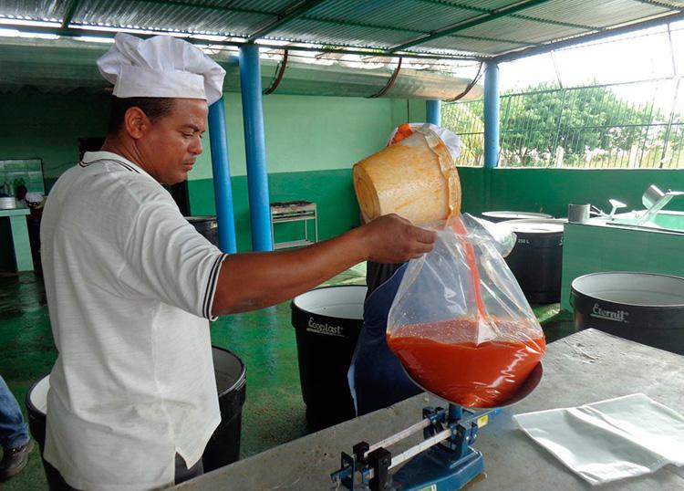 Con la pequeña mini-industria se obtienen jugos, dulces y pulpa de diversas frutas