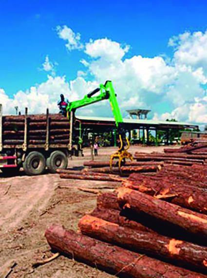El municipio se destaca por su alta producción de madera aserrada.