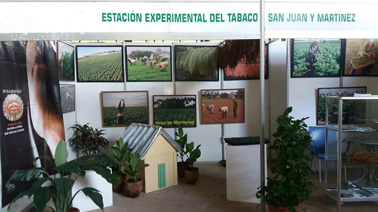 Estación Experimental del Tabaco en San Juan y Martínez