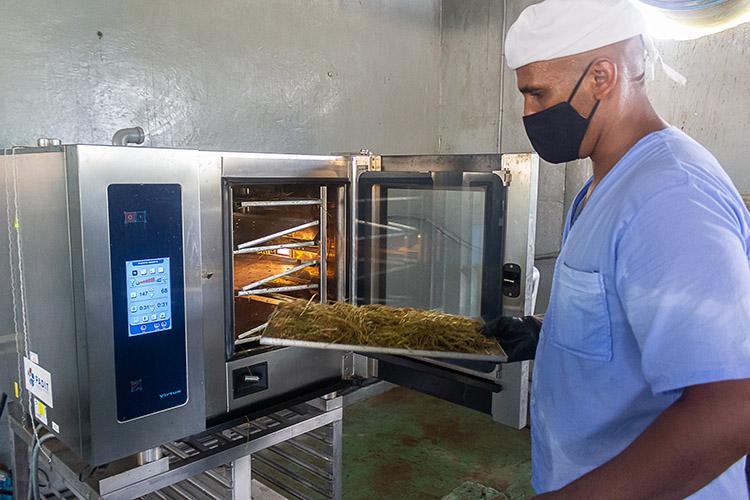 Desde hace varios meses incursionan en la elaboración de condimentos deshidratados, para lo que utilizan una moderna máquina que acelera el proceso