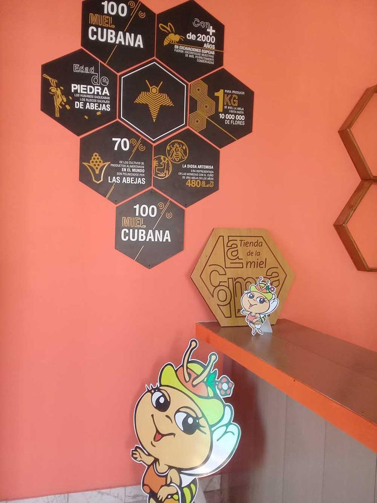 Alistan en Pinar del Río una casa de la miel