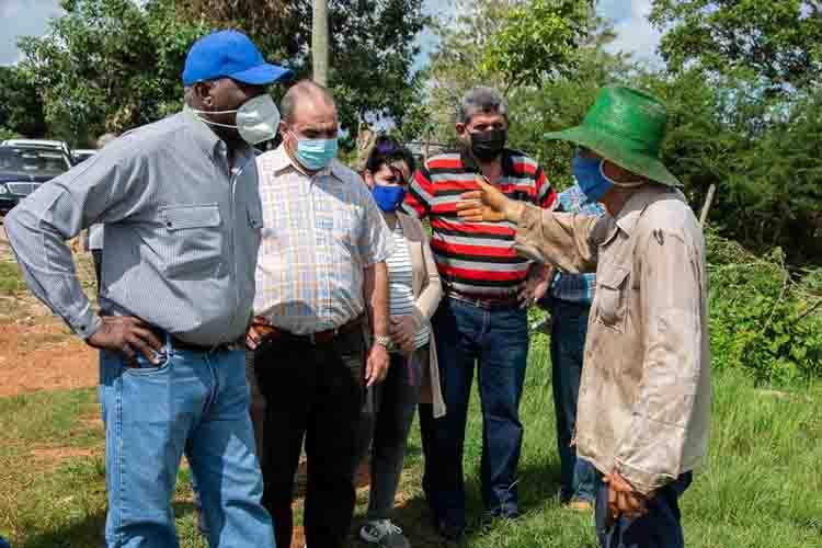 Salvador Valdés Mesa, vicepresidente de la República de Cuba, intercambió con autoridades del territorio, durante una visita realizada a la finca del productor Rodolfo Bernal Rodríguez, donde constató las afectaciones provocadas por el huracán Ida en las plantaciones plataneras, en el Municipio Los Palacios, en Pinar del Río, Cuba.