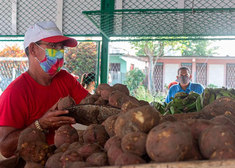 """Diógenes Ramos Duarte era anteriormente dependiente en el mercado del """"Llamazares"""". Ante los beneficios salariales de la nueva política decidió incorporarse al establecimiento gestionado por la Empresa de Tabaco Pinar del Río"""
